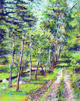 Serene Path by Michael Gaudet