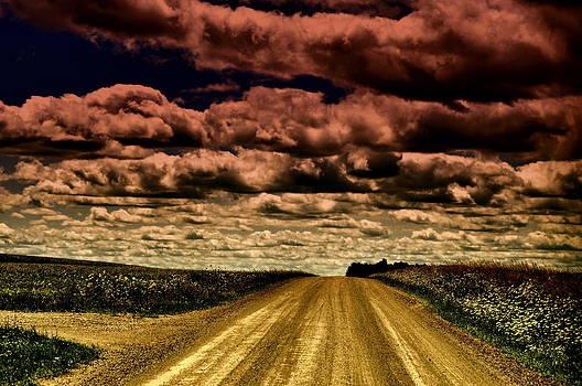 Emily Stauring - Serene Summer Drive