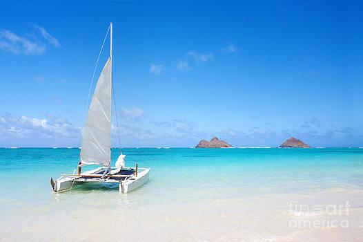 Serene Tropical Beach by Monica and Michael Sweet