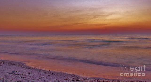 Serenity by Wendy Ohlman