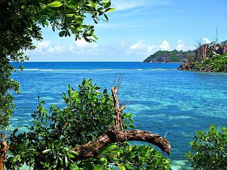 Seychelles by Jenny Senra Pampin