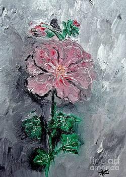 Ayasha Loya - Shadowed Petals