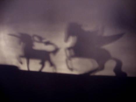 Shadows by David Campbell