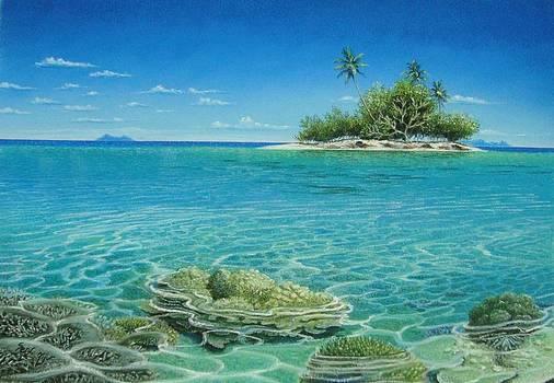 Shallow Water Corals by Pravin  Sen