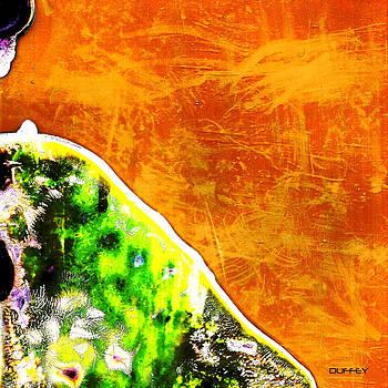 DOUG  DUFFEY - SHE WALKED TOWARD THE SUNRISE