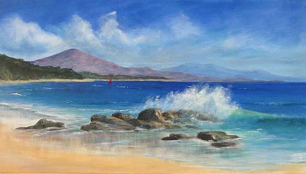 Shelly Beach by Rita Palm