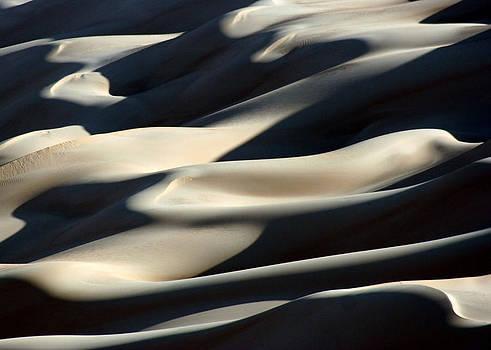Shifting Sands Of The Libyan Sahara by Joe & Clair Carnegie / Libyan Soup