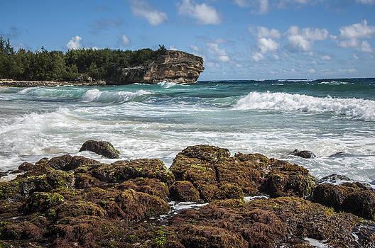 Shipwreck Beach by Jen Morrison