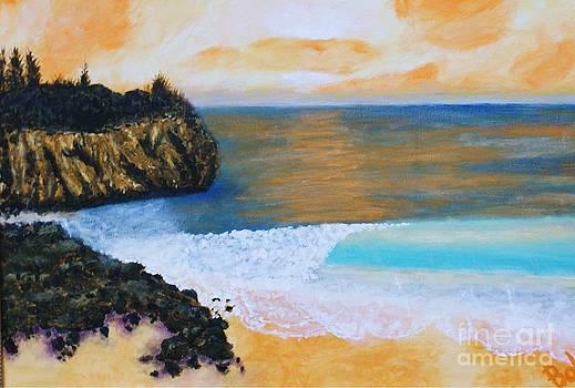 Shipwrecks Beach by William Ohanlan