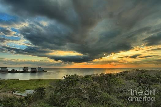 Adam Jewell - Shore Brush Sunrise