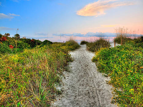 Shoreline Path to View Morris Island Lighthouse by Jenny Ellen Photography