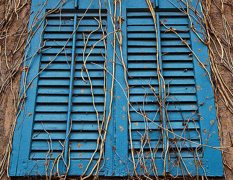 Shutters and Vines by Charles Fletcher