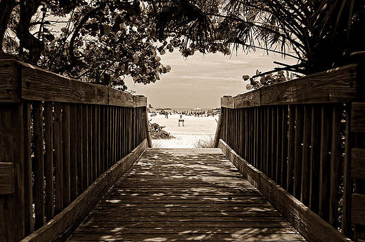 Siesta View by Lawrence Ott