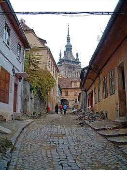 Sighisoara Citadel Romania by Mircea Veleanu