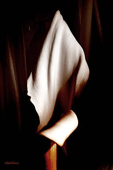 Michelle Wiarda - Silent Film Star