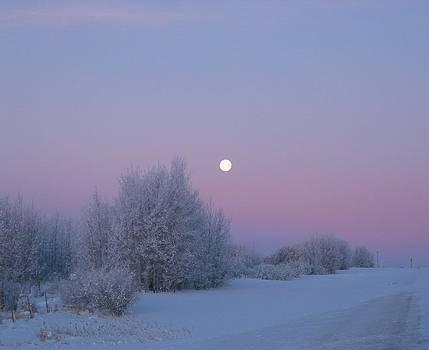 Silent Morning by Jesslyn Fraser