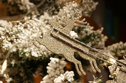 Silver Christmas by Tingy Wende