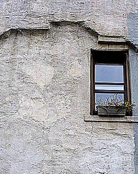 Single Window by Maria Scarfone