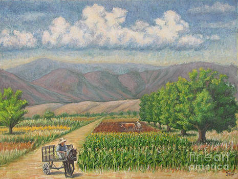 six nut trees in Zaachila by Judith Zur