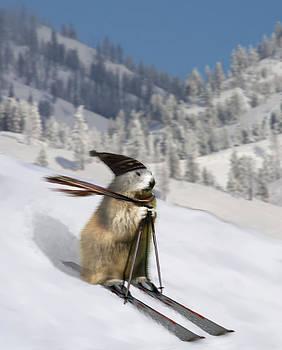 Ski Fun by Enrico Ackermann