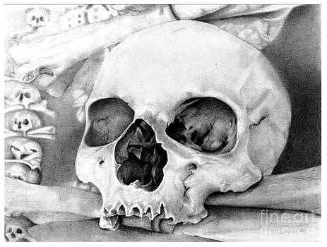 Skull Original Pencil Drawing by Debbie Engel