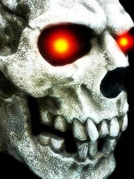 Skull Right by Edward Przydzial