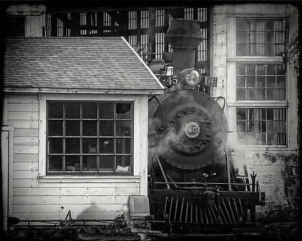 William Havle - Skunk Trains Cabin