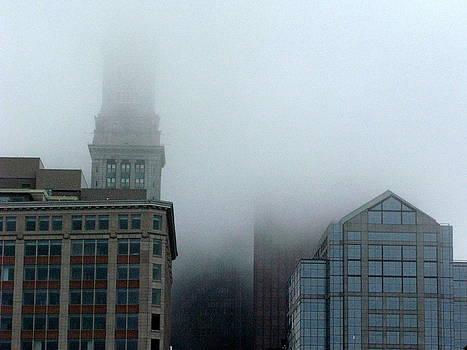 Skyline Fog 1 by Julia Jones