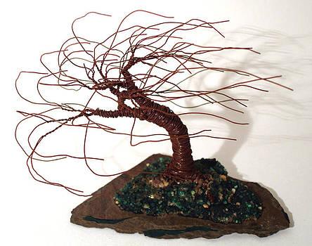 Slated Wind Swept - Tree Sculpture by Sal Villano