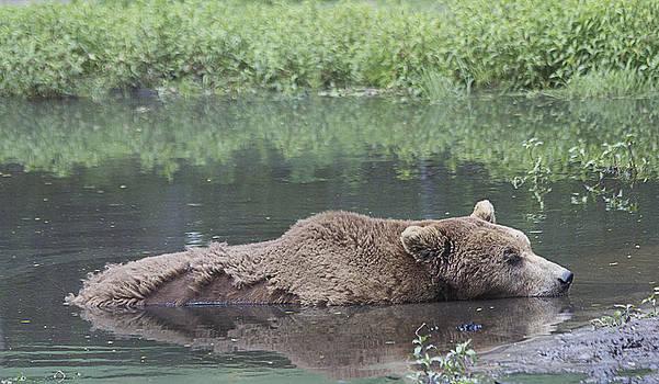 Sleeping On The Water by Yosi Cupano