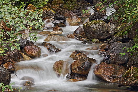 Small Falls by Daryl Hanauer