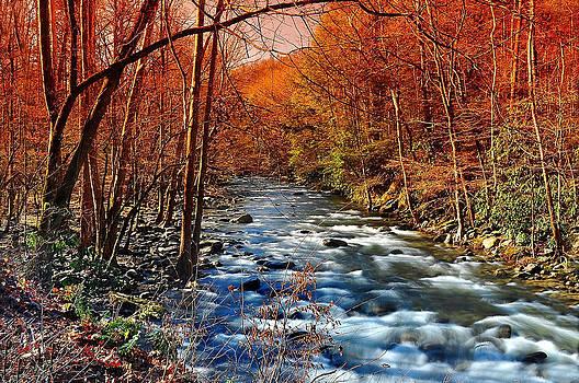 Smoky Mountain water falls by Michael Austin
