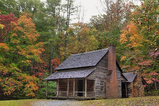 Smoky Mountains Log Capbin by Charles Warren