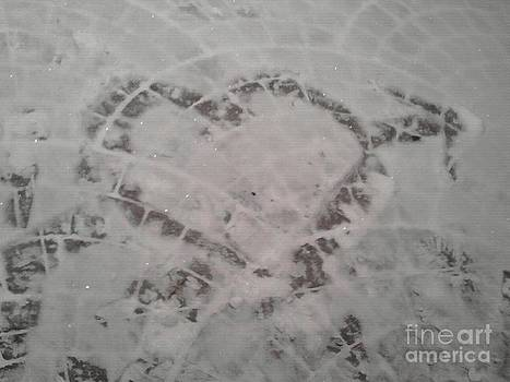Snow Heart 2012 by Catherine Herbert