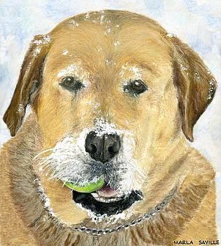 Snow on My Tennis Ball by Marla Saville