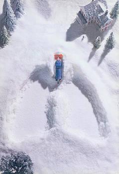 Snow by Richard McGee