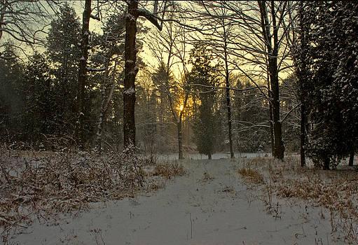 LeeAnn McLaneGoetz McLaneGoetzStudioLLCcom - Snow Storm Sunset