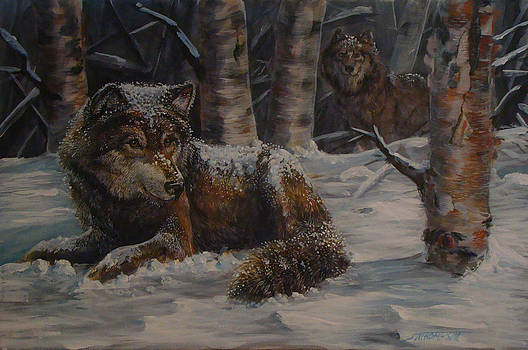 Snow Wolves by Scott Thompson