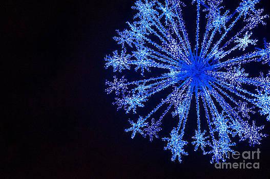 Snowflake Sparkle by Anca Jugarean
