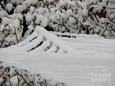 Judy Via-Wolff - Snowstorm Art
