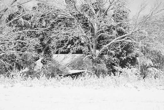 Snowy Barn by Julie Strickland