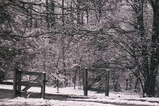 Snowy Gate by Wide Awake Arts