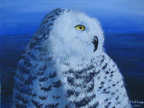 Snowy Owl by Don Hutchison