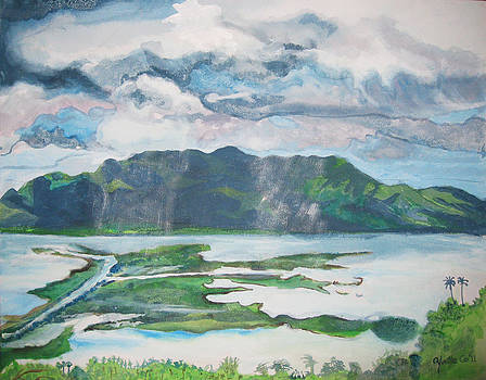 Soft Rain in Laguna by Yvette Co