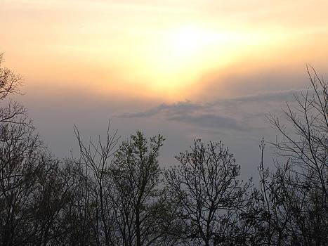Shane Brumfield - Soft Sunset