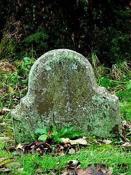 Daryl Macintyre - Solitary Gravestone
