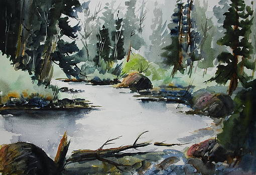 Solitude - Gull River by Wilfred McOstrich