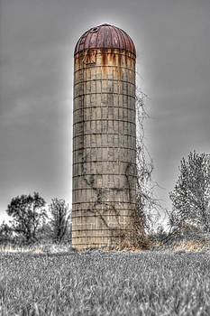 Solo Silo Photograph by Jeramie Curtice