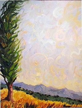 Sonoma Skies by Marianne  Gargour