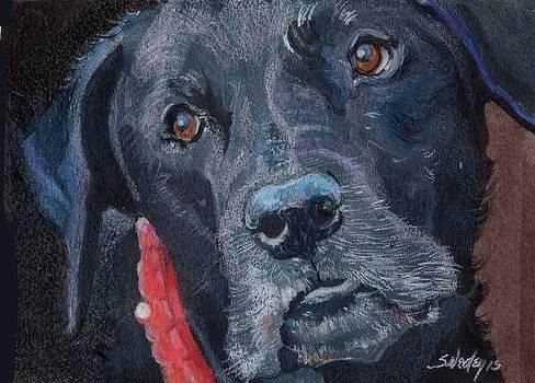 Soulful by Sheila Wedegis